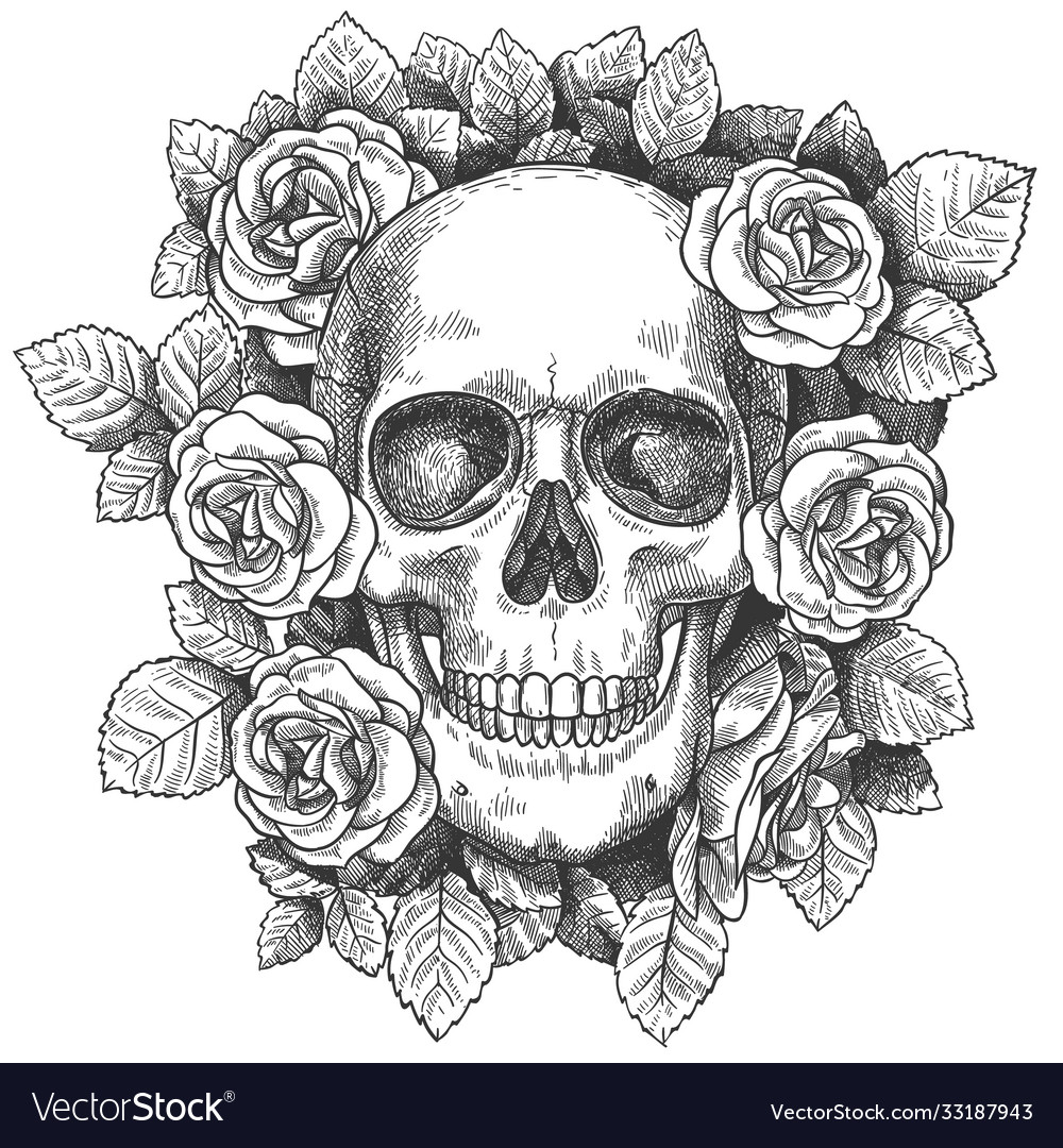 Skull with flowers sketch human skull with roses