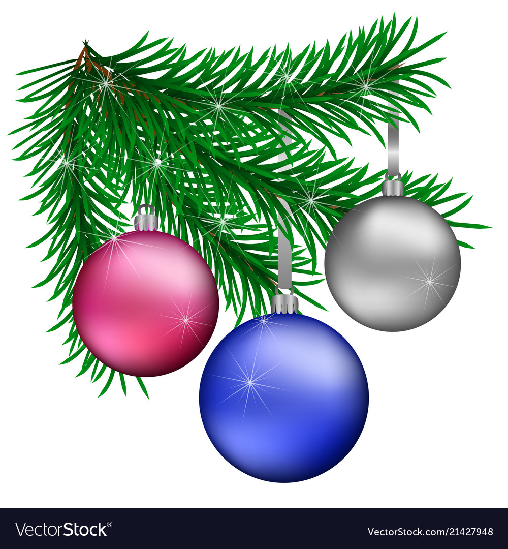 Branch Christmas Trees With Blue Purple Silver Vector Image