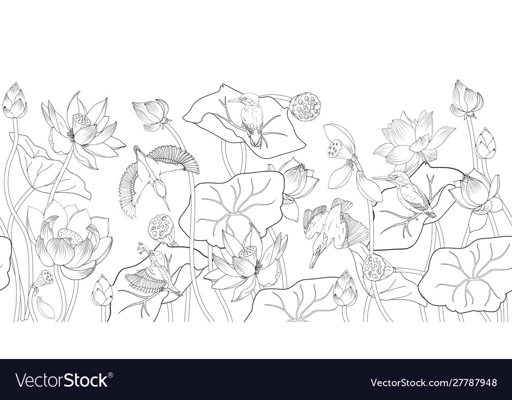 Lotus flowers and kingfishers coloring a black