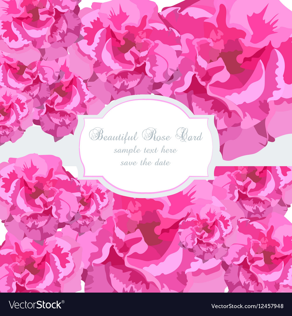 Watercolor Frame with Blooming English Roses Vector Image