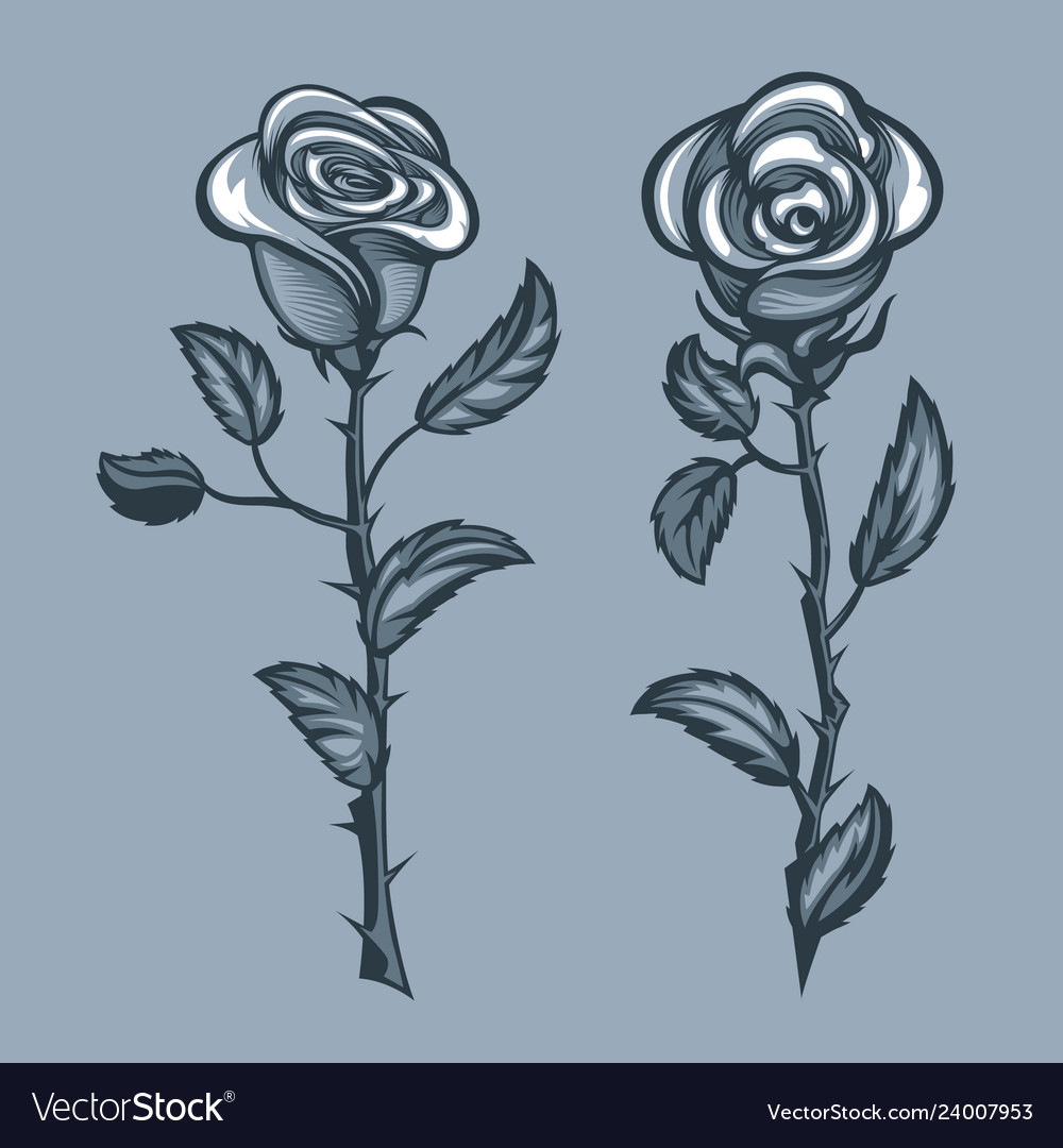 Two roses with thorns monochrome tattoo style