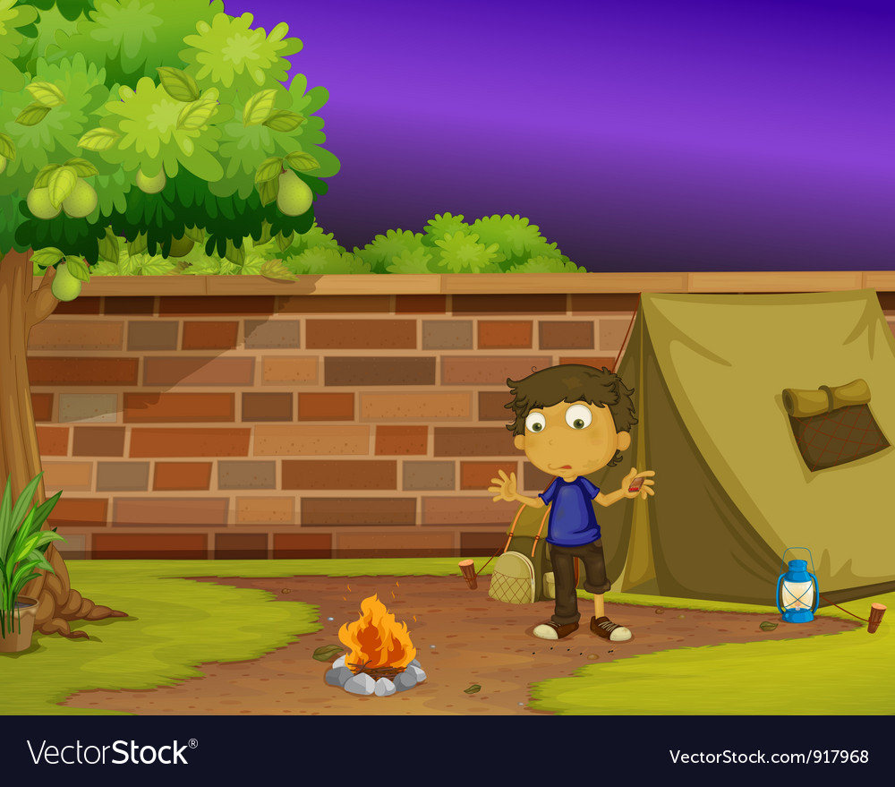 Boy camper vector image