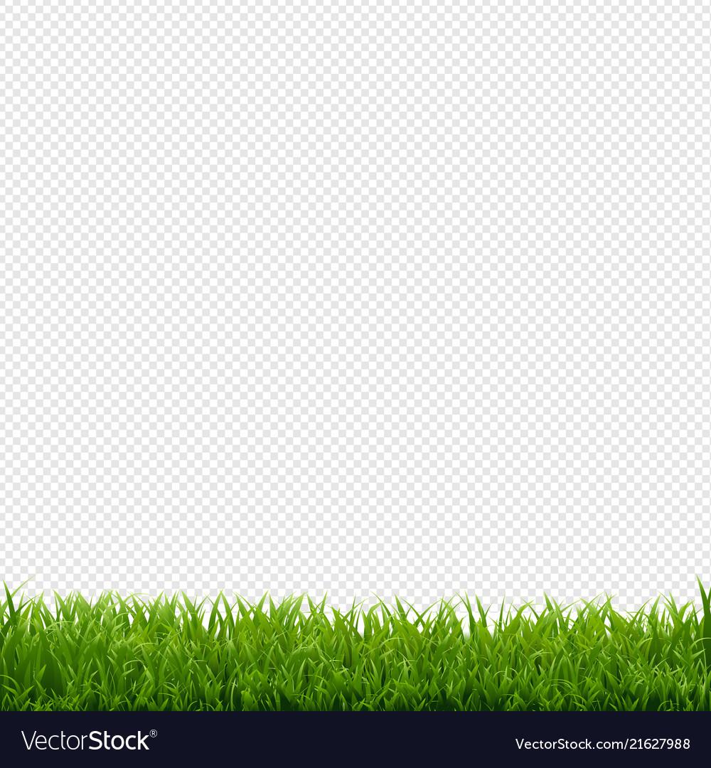 grass transparent background. Grass Border Transparent Background Vector Image Grass