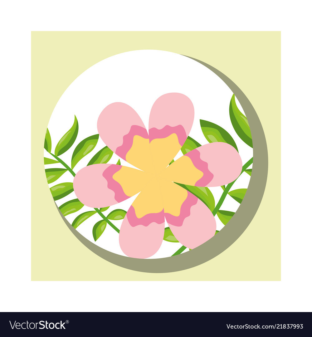 Tropical Leaves Round Banner Flower Branches Vector Image