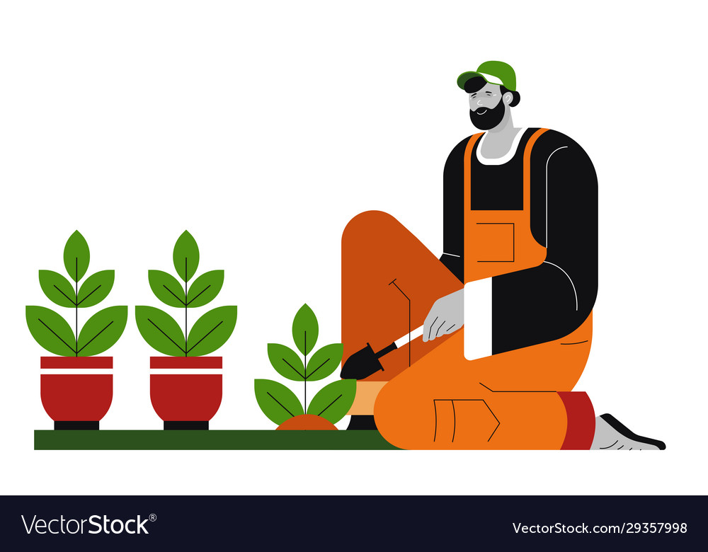 Gardener And Plants In Pots Man Planting Potted Vector Image