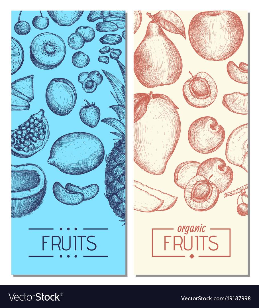 Natural fresh fruits hand drawn flyers vector image