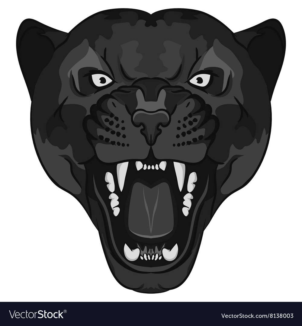Panther Portrait Angry wild big cat