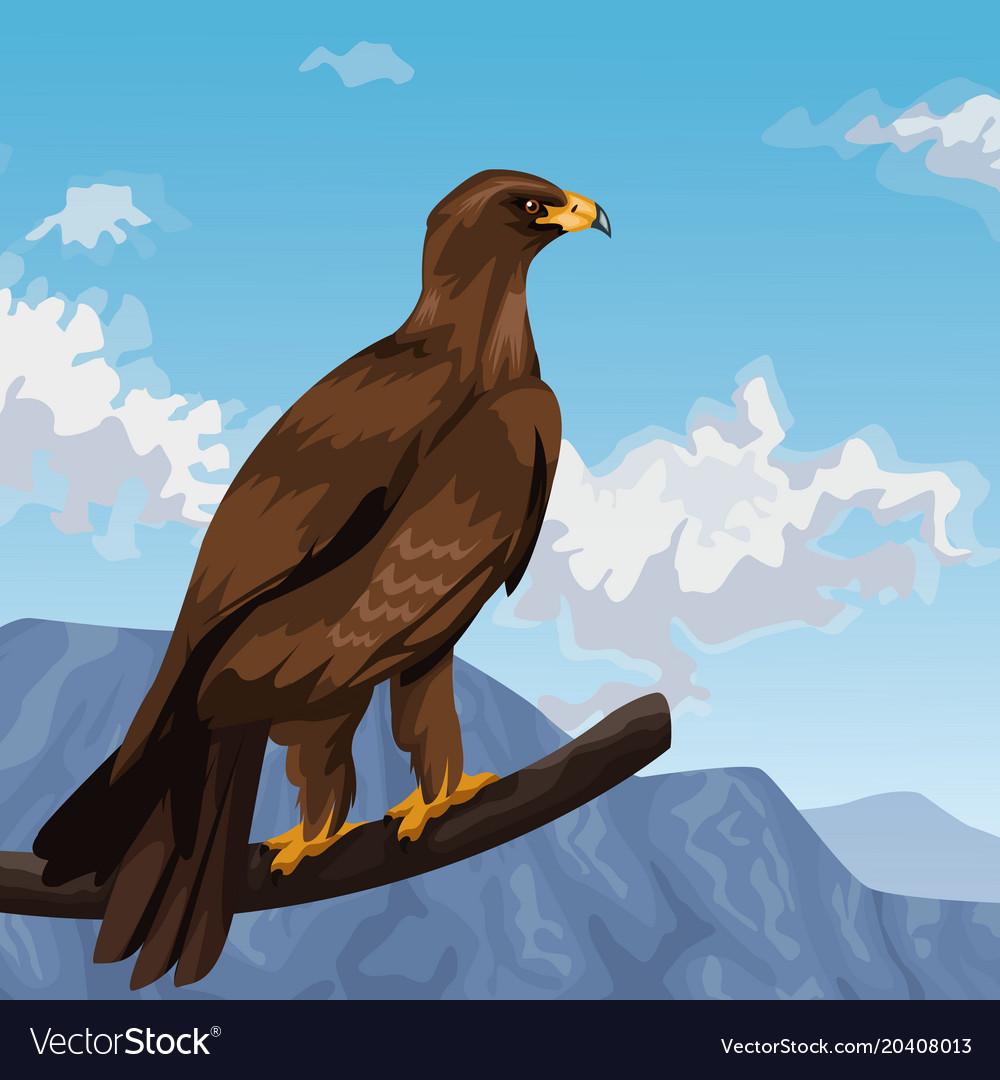 Eagle Landscape