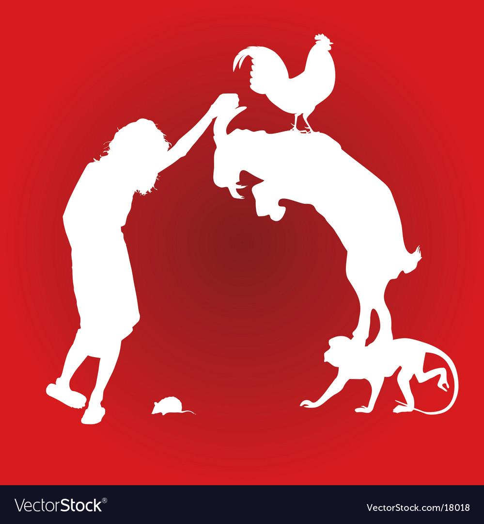 Animal composition
