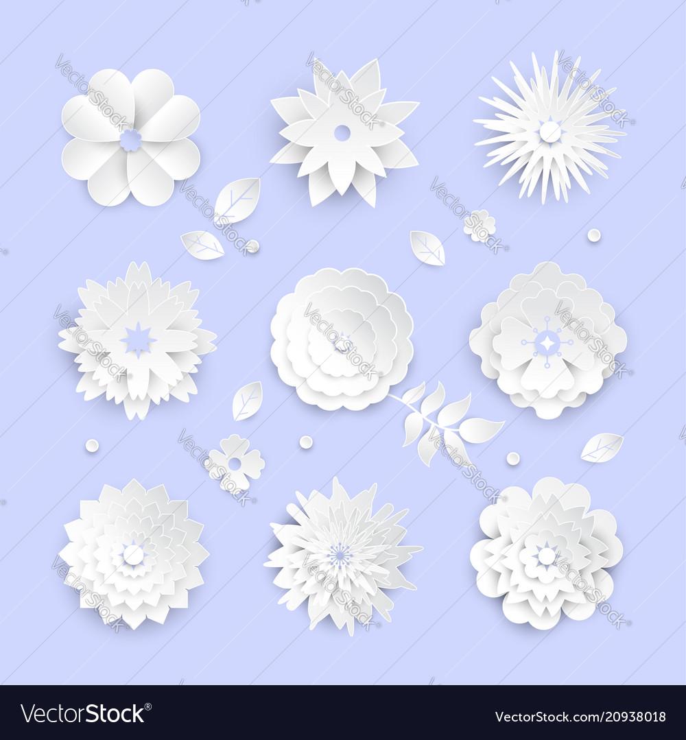 White paper cut flowers - set modern
