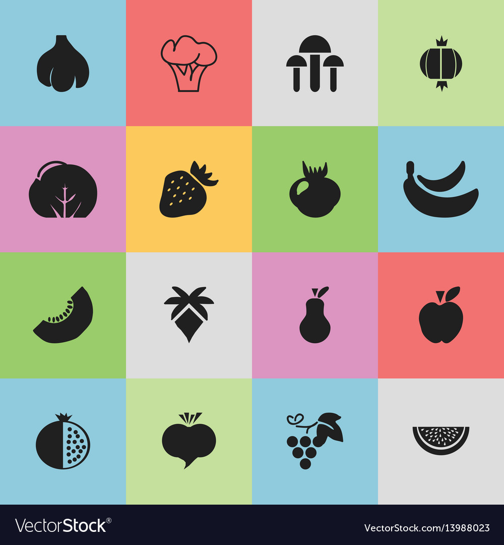 Set of 16 editable berry icons includes symbols