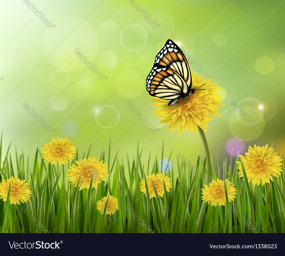 Summer background with dandelions and a butterfly