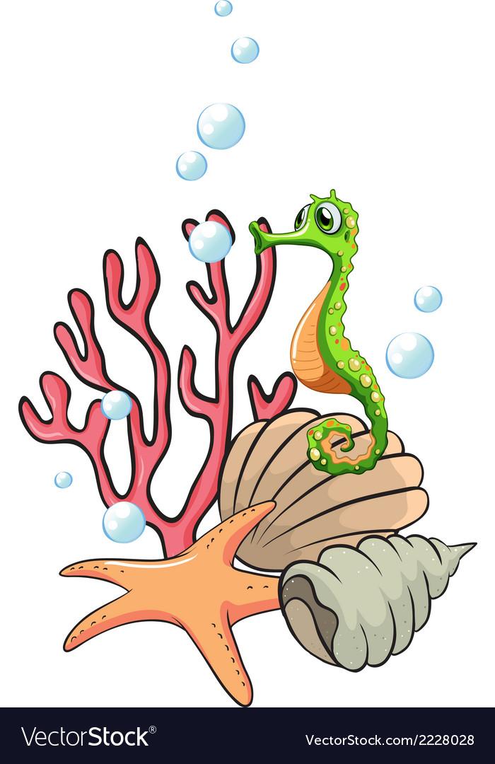 Creatures under the sea