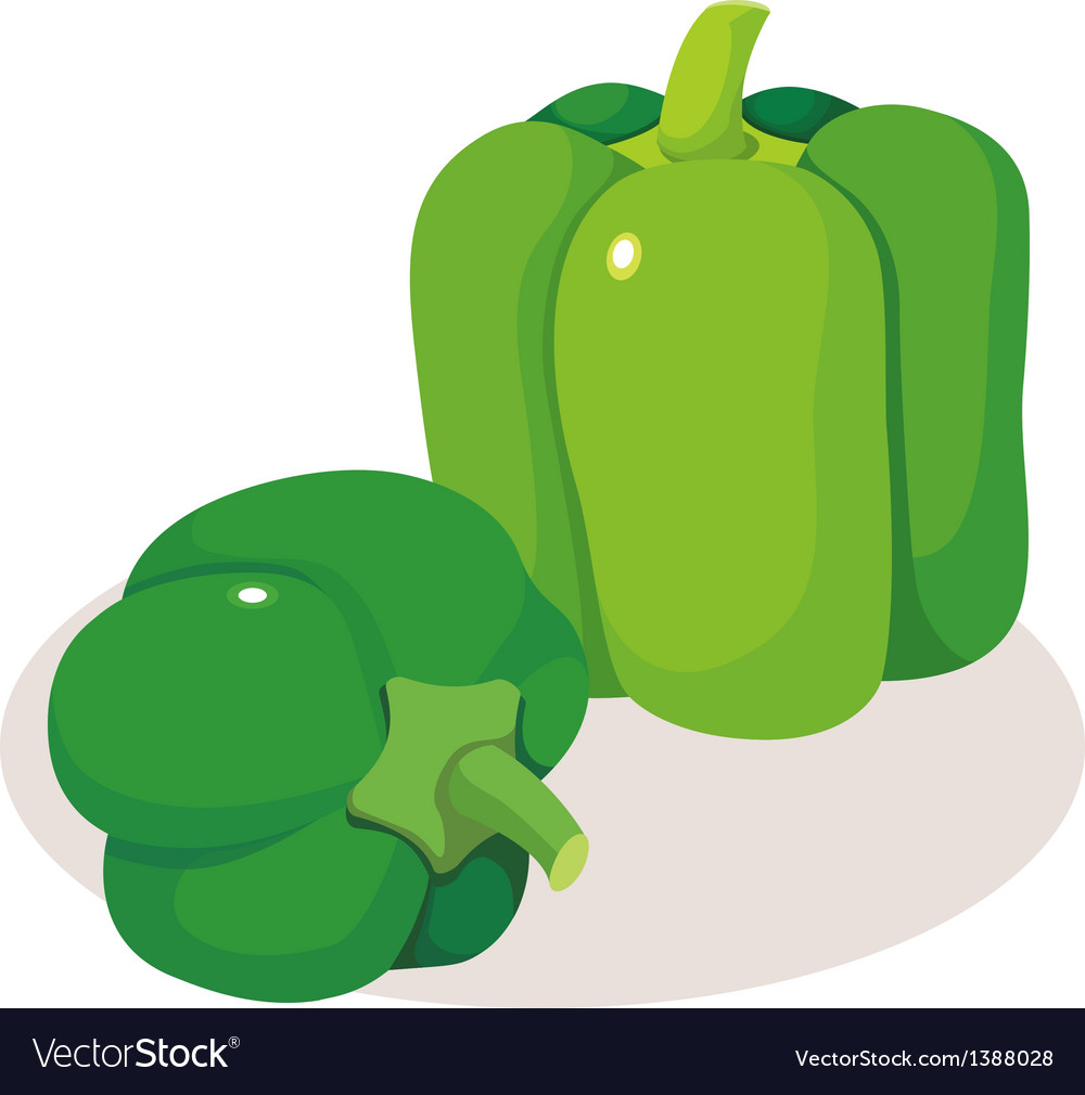 Icon vegitable vector image