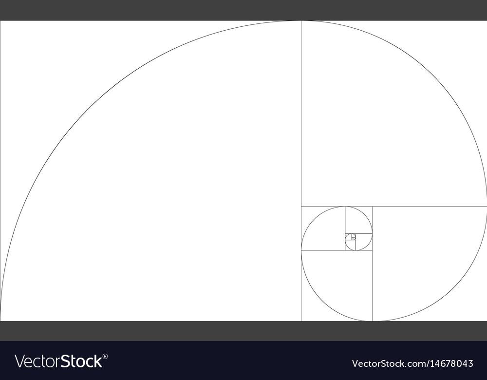 Golden ration section line frame vector image