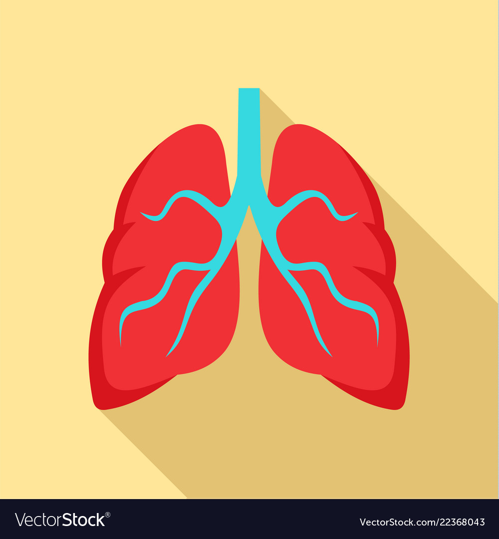 Tuberculosis lungs icon flat style