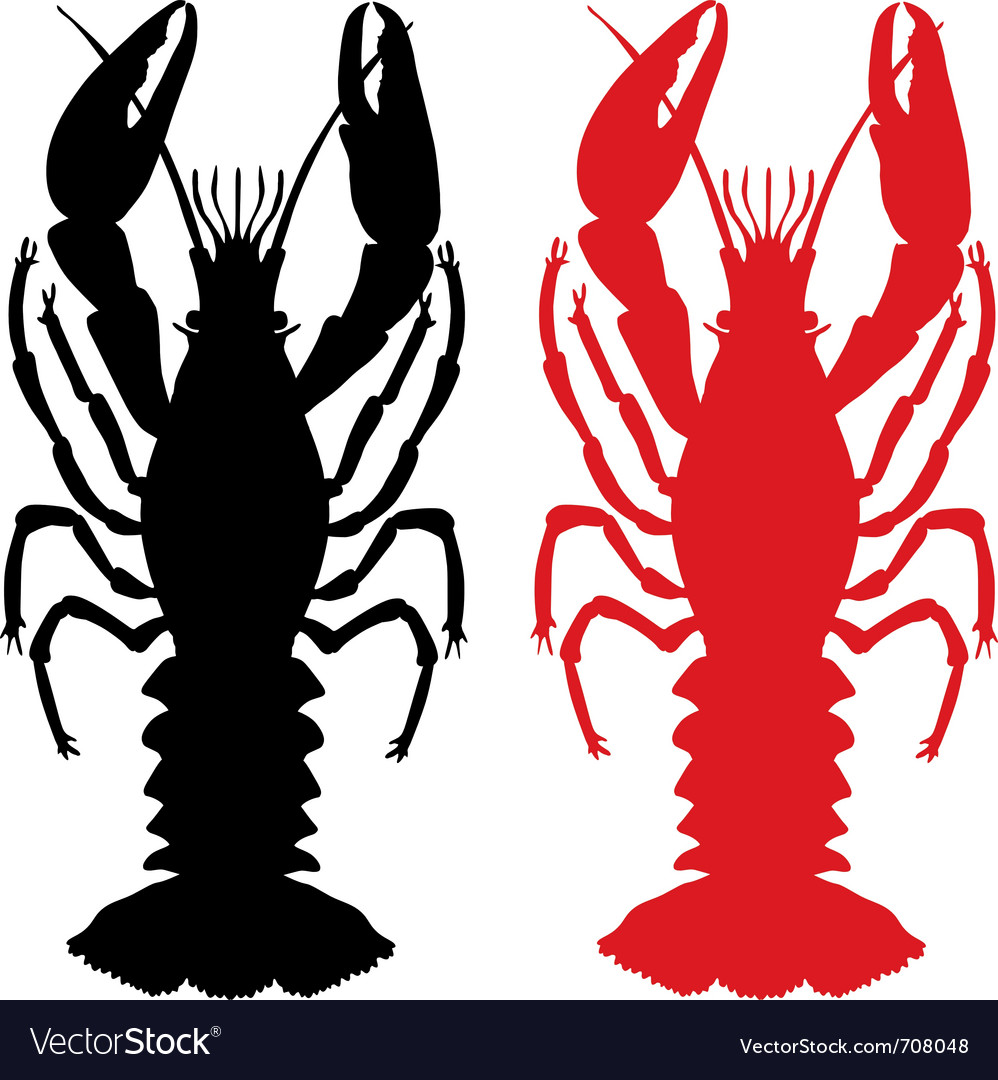 Crawfish silhouette vector image