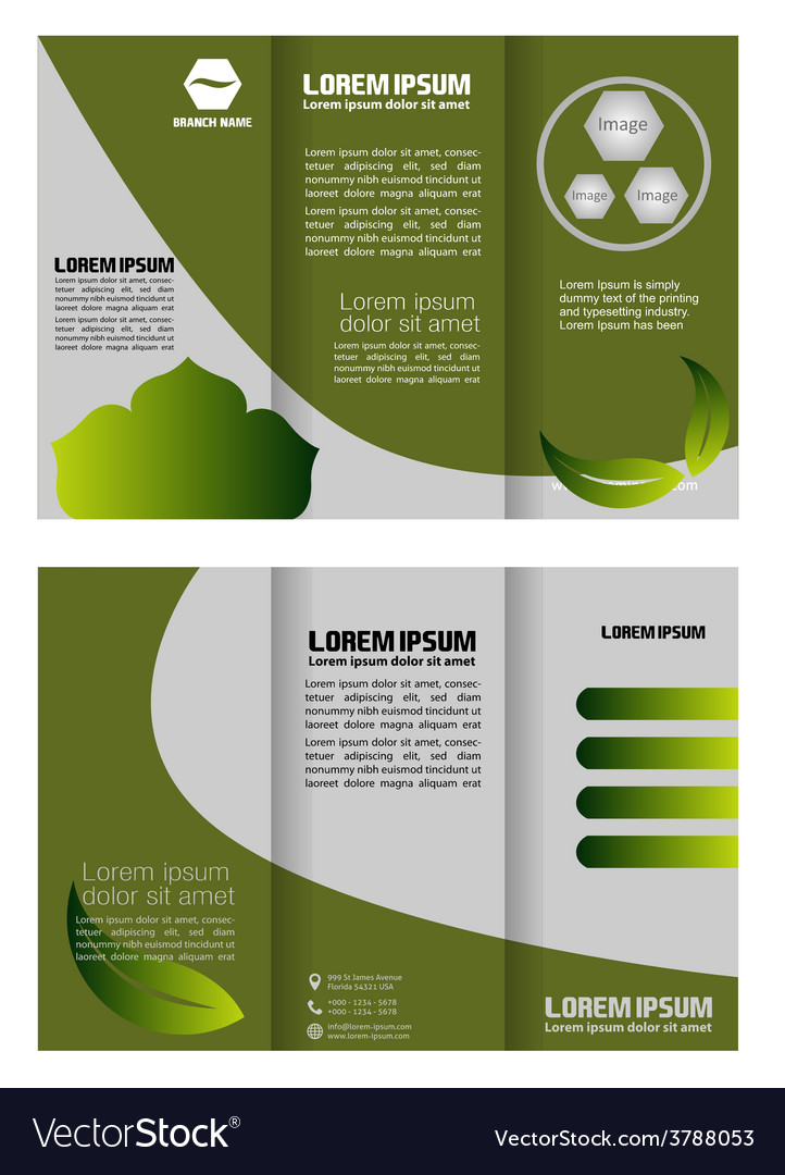Brochure folder leaflet bio eco green leaf nature