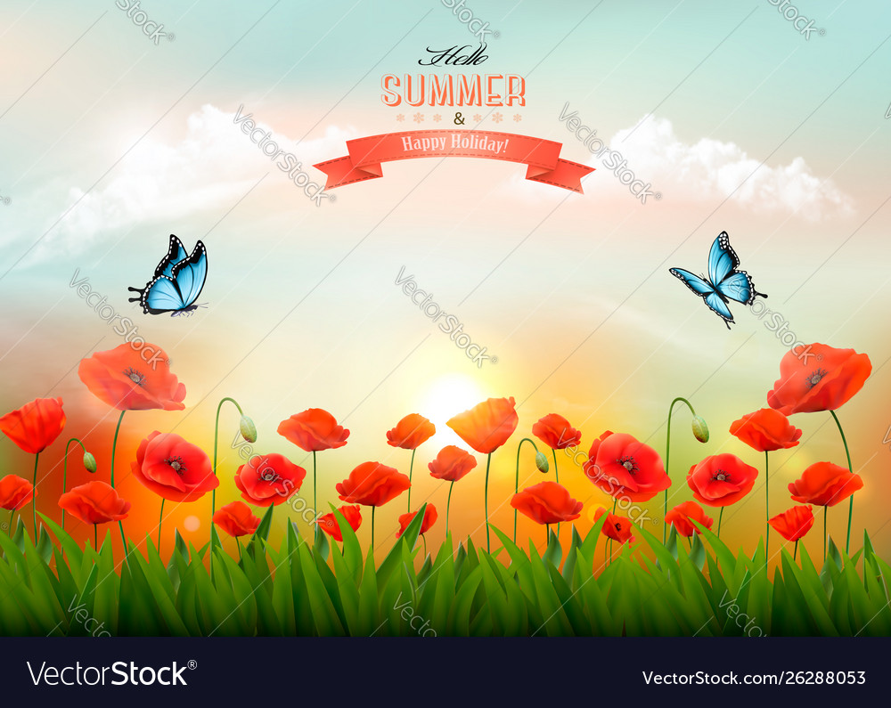 Summer nature background with red poppies and a
