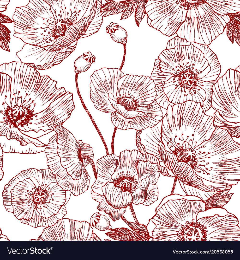seamless pattern california poppy flowers drawn vector image