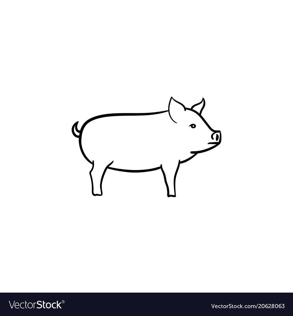Pig hand drawn sketch icon vector image