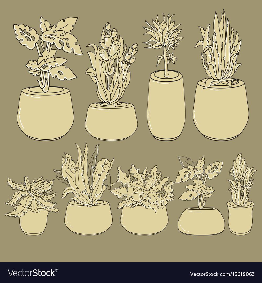 Set of doodle house plants in ceramic pots vector image