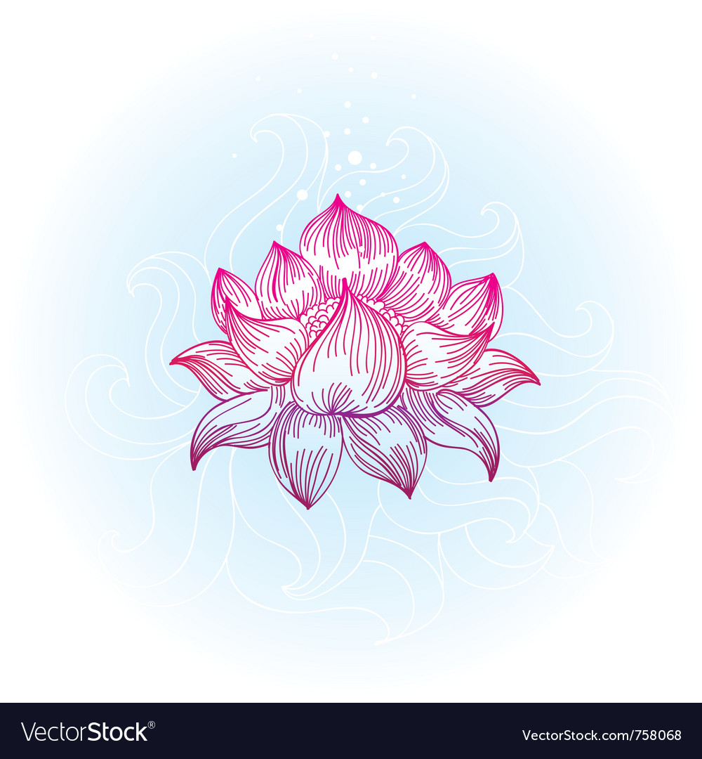 Lotus in hand-drawn style