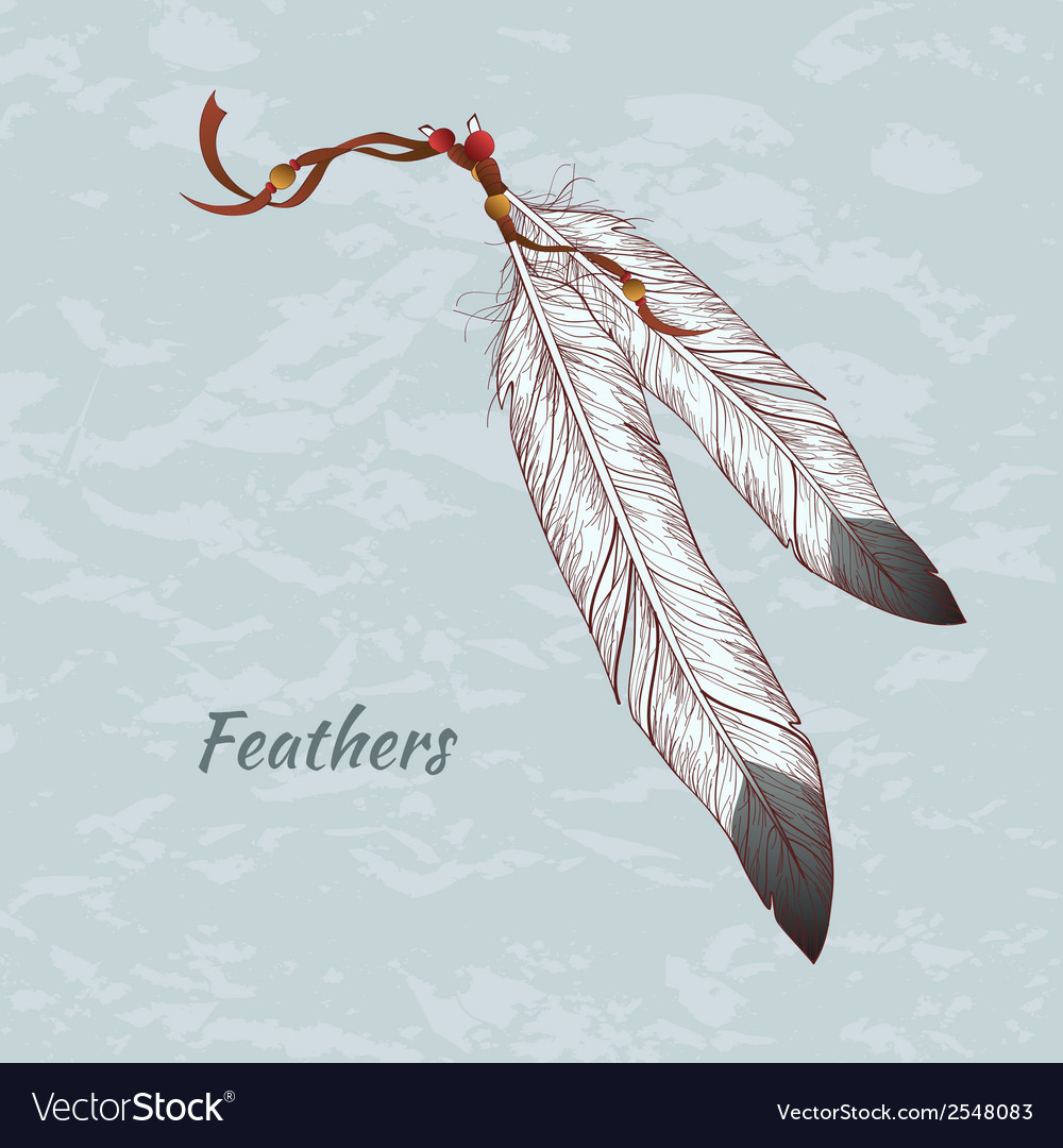 Colorful of feathers