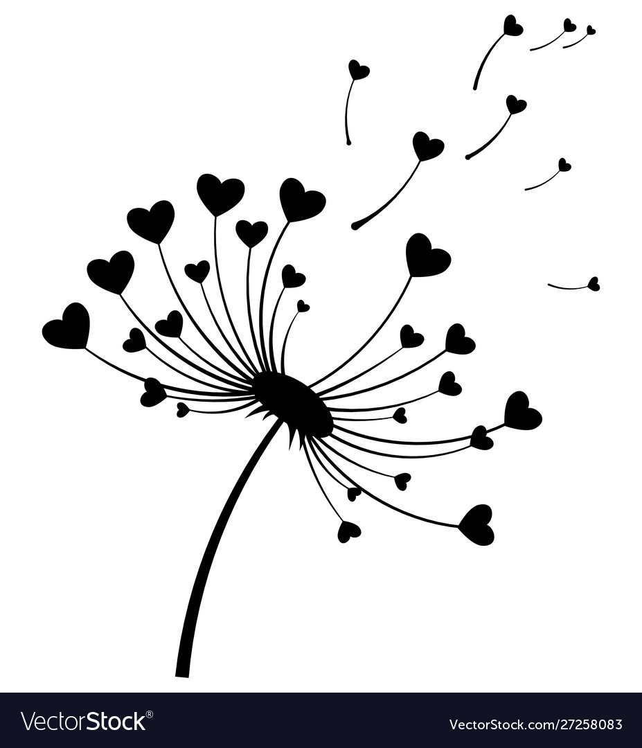 Dandelion with hearts black and white dandelion