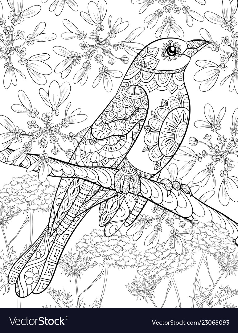 Adult coloring bookpage a cute bird on the