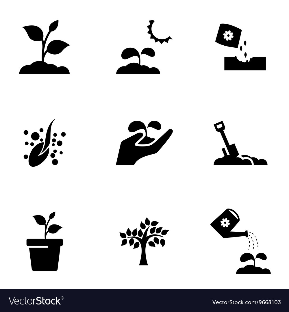 Black growing icon set