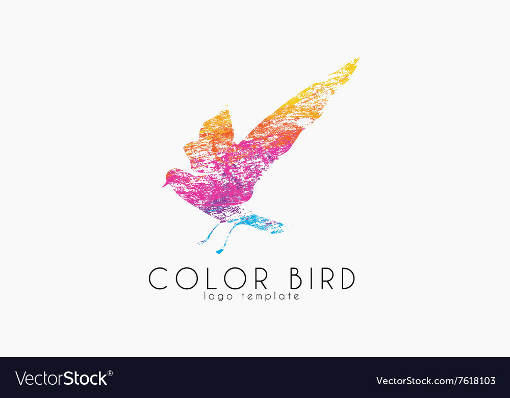 Color bird Rainbow logo Colorful logo design