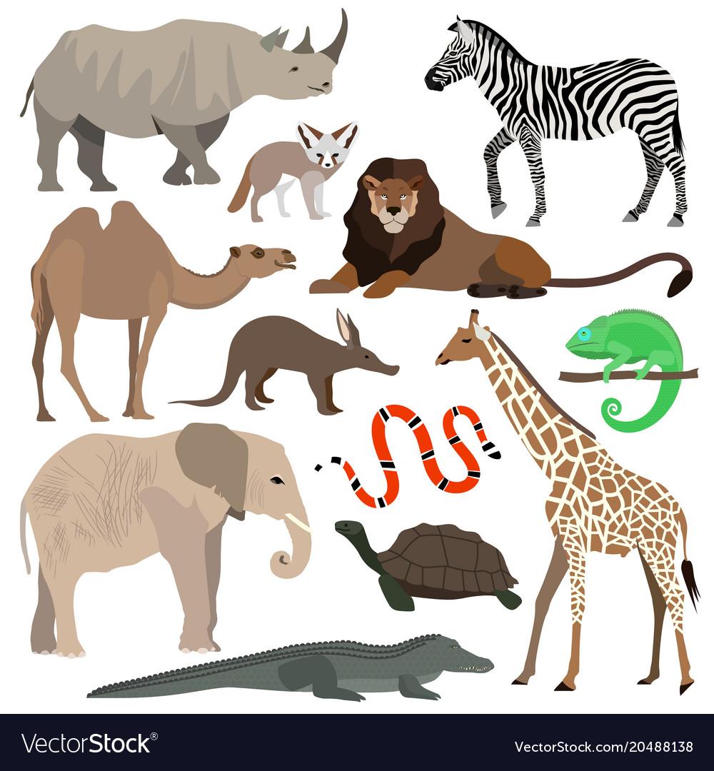 African animals set elephant giraffe buffalo