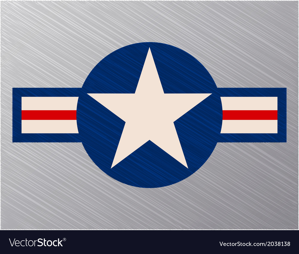 Us air force sign vector image