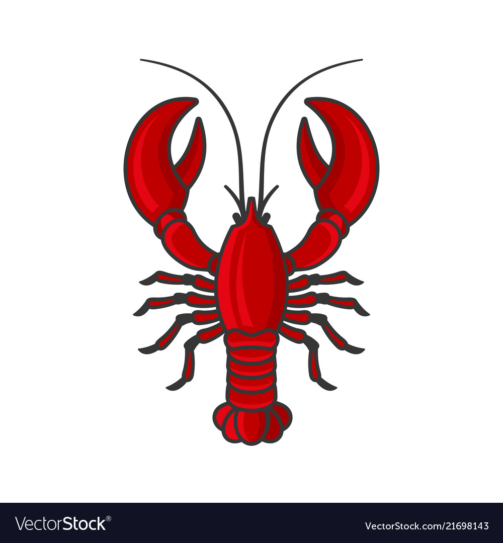 Red lobster icon on white background