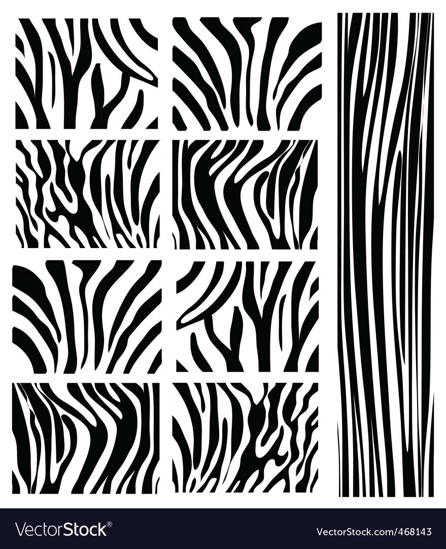 Zebra Pattern Best Design Inspiration