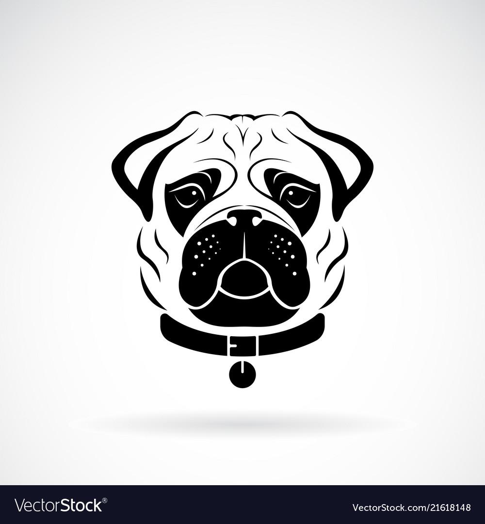 Pug dog face design on white background pet