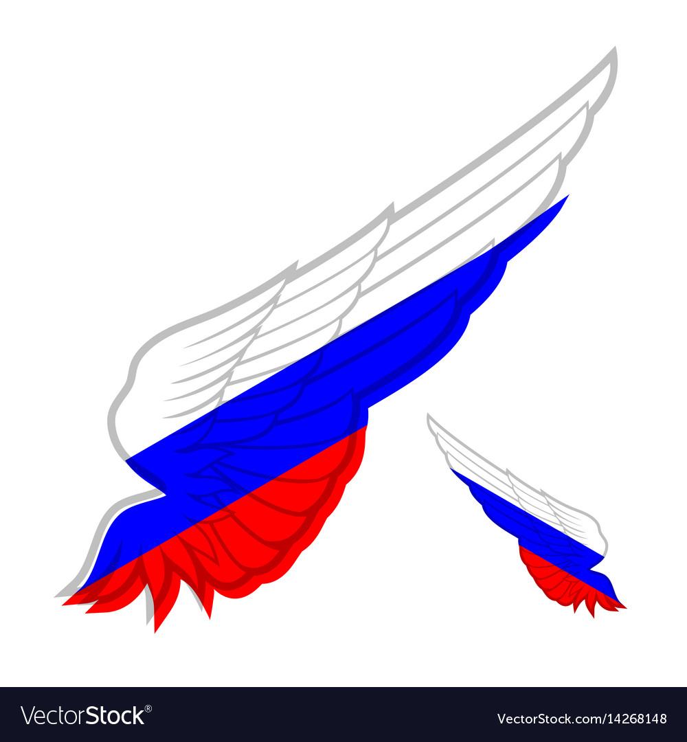 Wing with flag of russia on white background vector image
