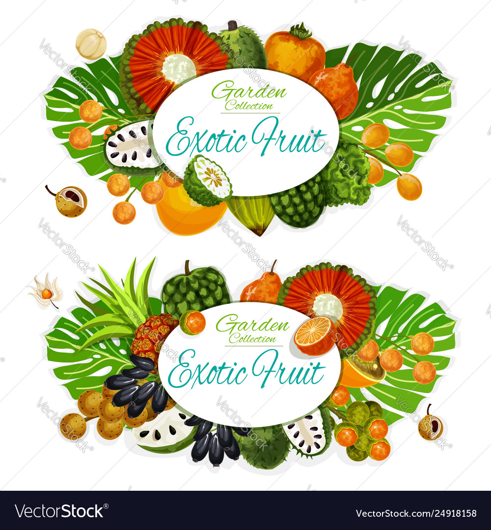 Exotic fruits and tropical berries food and drink