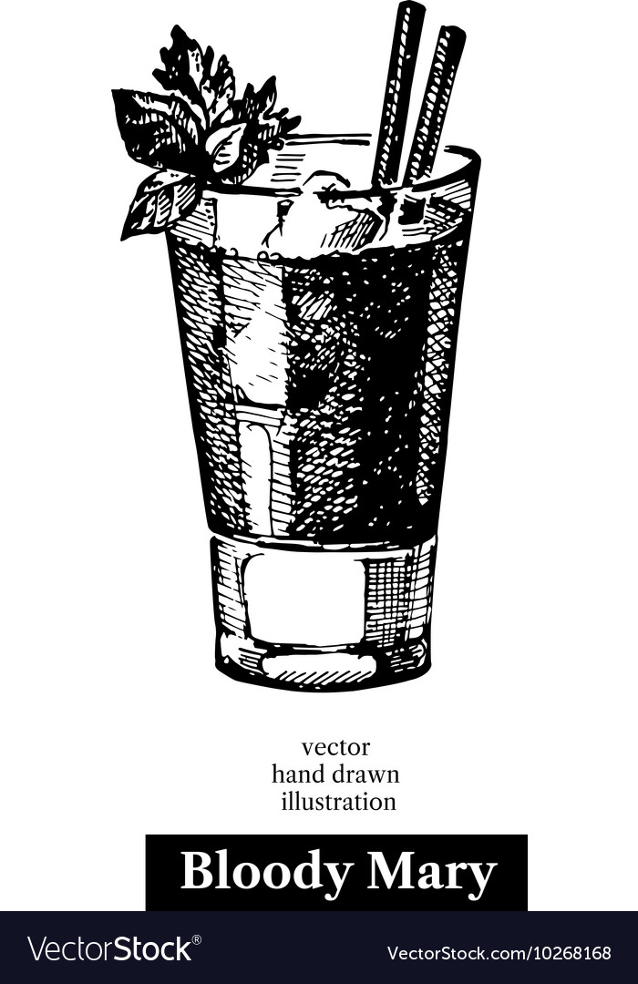 Hand drawn sketch cocktail bloody mary vintage