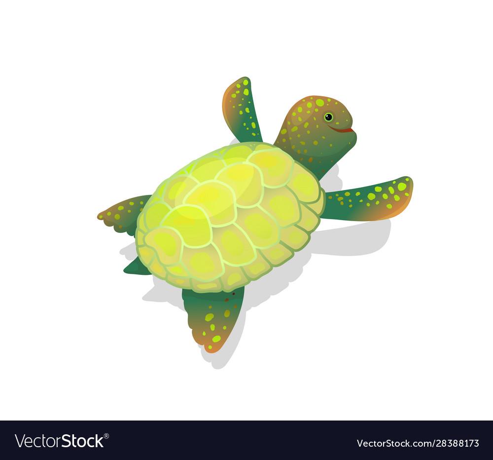 Sea turtle clip art childlike cartoon underwater