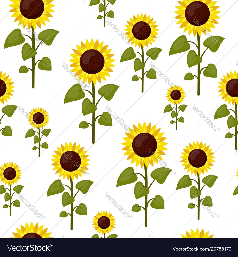 Seamless pattern sunflowers cartoon isolated on a
