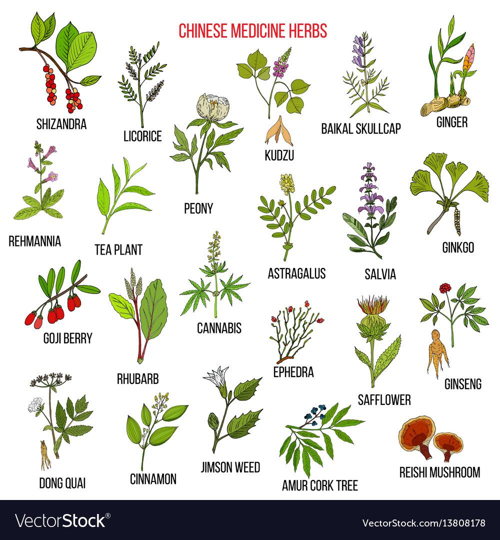 Chinese Herbs Pdf