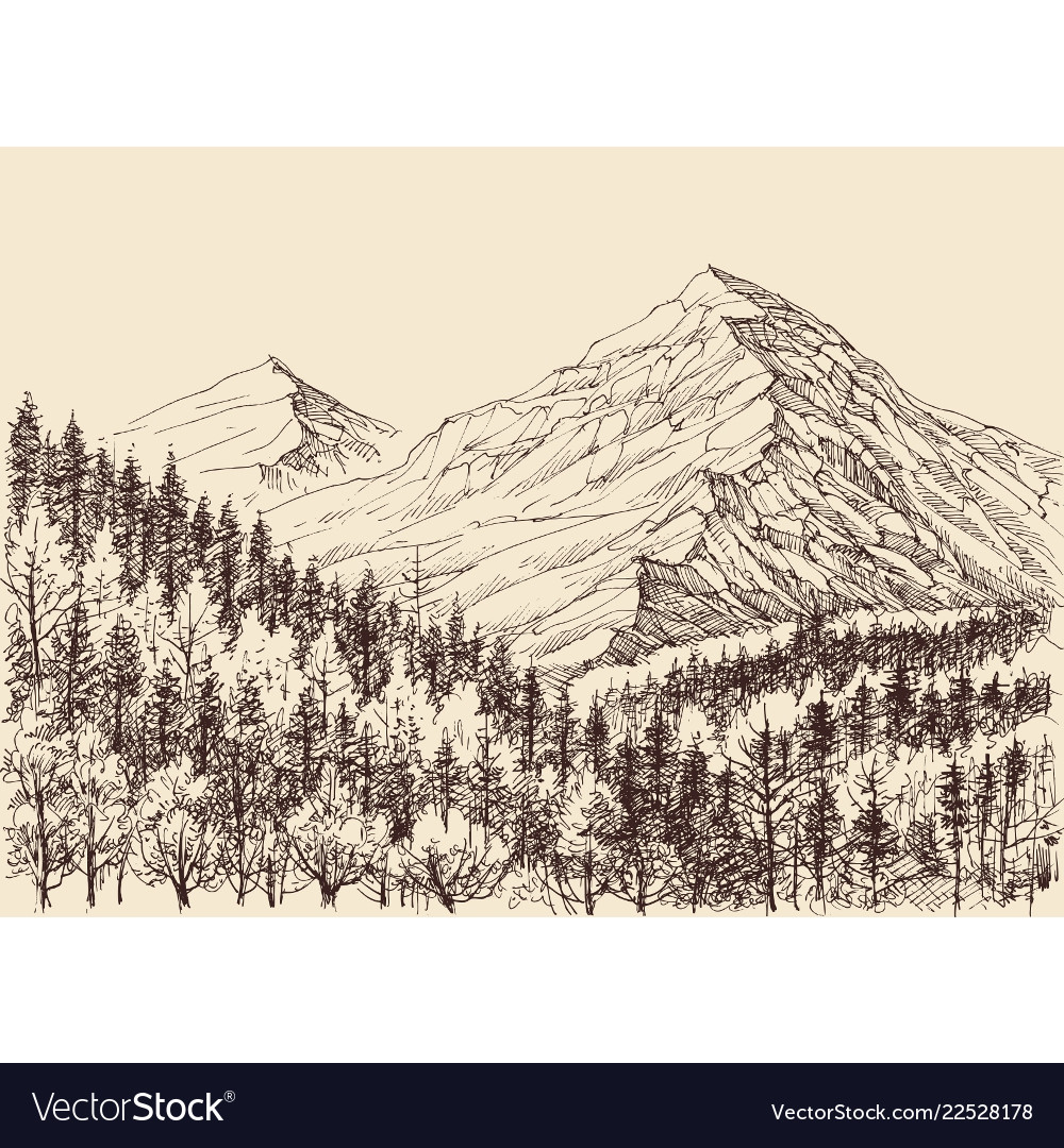 Mountains panorama alpine forest drawing