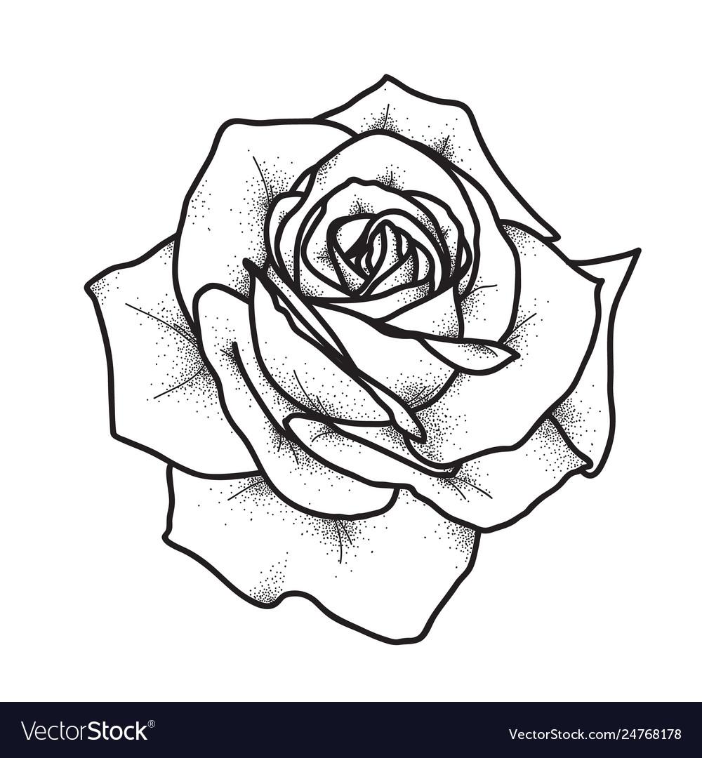 Rose Tattoo Art Vintage
