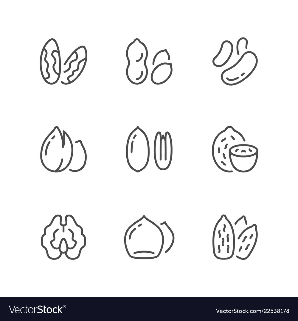 Set line icons of nuts