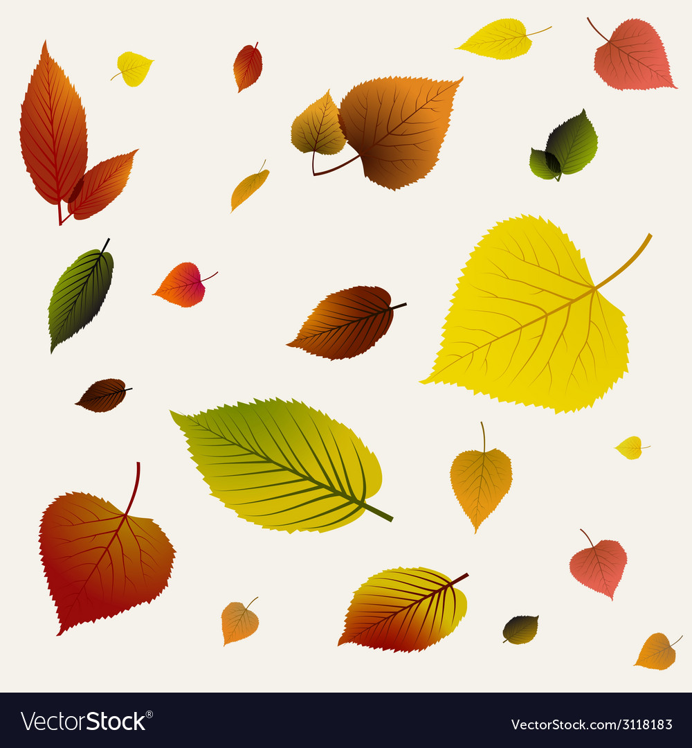 Autumn abstract floral background pattern vector image