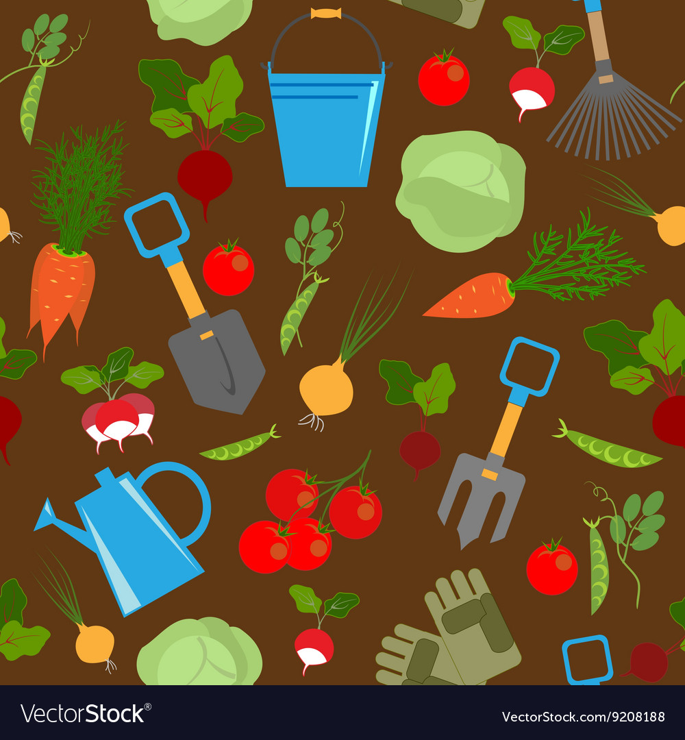 Fresh Vegetables And Garden Tools Royalty Free Vector Image