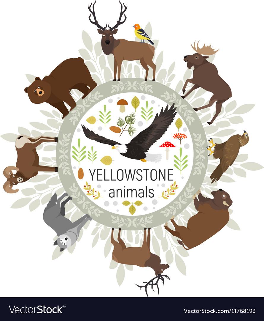 Circle template of Yellowstone National