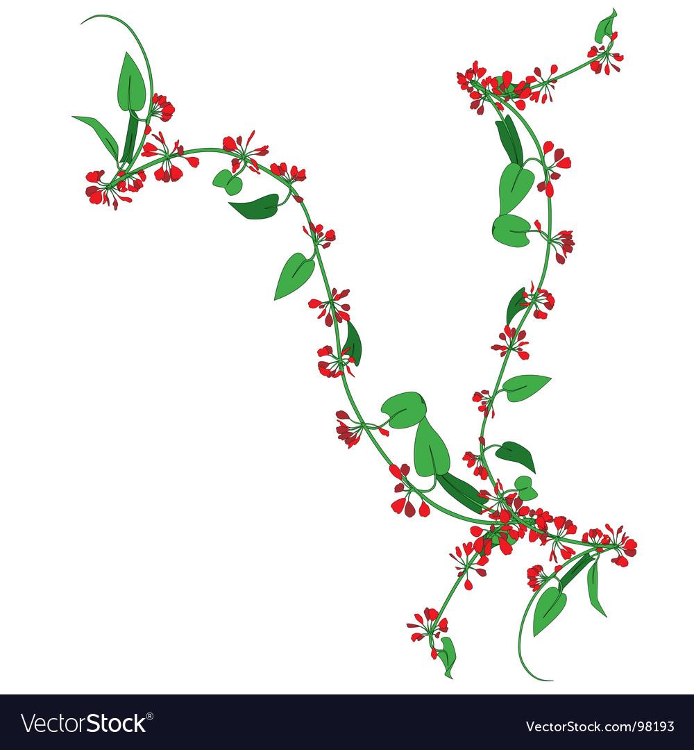 Creepy plant vector image